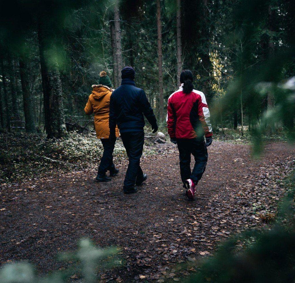 Kolme ihmistä kävelee metsässä.